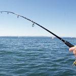 Сезон рыбалки на лимане